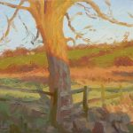 Last Light Tree Study, Anglesey 14x12ins £665